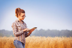 Pretty farmer girl in glasses keeps a wheat crop accounting. Pretty farmer girl in glasses with hair tied in a ponytail keeps a harvest accounting on the tablet Royalty Free Stock Photos