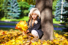 Pretty Fashion girl sitting under a tree with. A bouquet of maple leaves on a sunny autumn day Royalty Free Stock Image