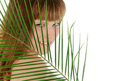 Pretty female behind palm leaf over white Stock Photography