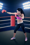 Pretty female boxer fighting in the ring Royalty Free Stock Photos