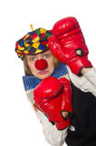 Pretty female clown with box gloves isolated on Stock Photo