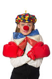 Pretty female clown with box gloves isolated on Stock Images