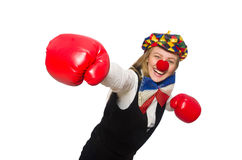 Pretty female clown with box gloves isolated on Royalty Free Stock Images