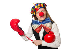 Pretty female clown with box gloves isolated on Royalty Free Stock Photos