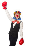 Pretty female clown with box gloves isolated on Royalty Free Stock Photography