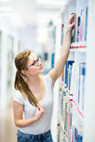 Pretty, female college student in a library, looking for a book Royalty Free Stock Photo
