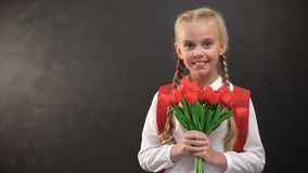 Pretty female first-grader holding tulips bouquet against blackboard background stock footage