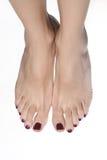 Pretty female legs Royalty Free Stock Photography
