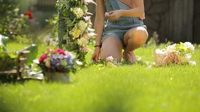 Young caucasian model posing and smiling girl making a tender floral composition from pink and white flowers on a joyful stock video footage