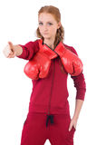 Pretty female sportsman with box gloves isolated Stock Photos