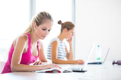 Pretty, female student with books and laptop Royalty Free Stock Photos