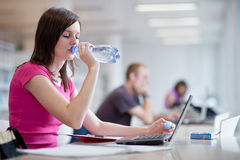 Pretty female student with laptop Royalty Free Stock Photos