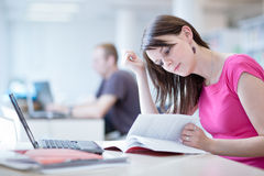 Pretty female student with laptop Stock Image
