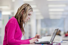 Pretty, female student with laptop and books Stock Images