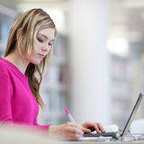 Pretty, female student with laptop and books Royalty Free Stock Photography