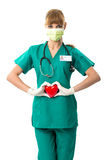 Pretty female surgeon holding a red heart . Stock Images