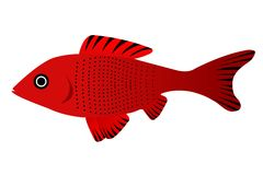 Pretty fish Royalty Free Stock Images