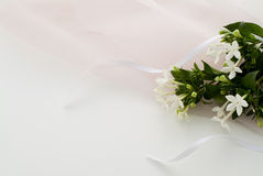 Pretty flower Royalty Free Stock Photography