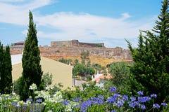 Pretty flowers and castle, Castro Marim. Stock Photo