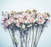 Pretty flowers on pastel blue background, top view. Floral layout. Or card stock photos