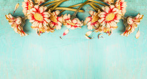 Pretty flowers on turquoise shabby chic background , top view, border. Royalty Free Stock Image