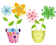 Pretty flowers in two pots Royalty Free Stock Photography