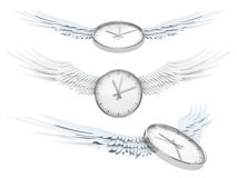 Pretty flying time Royalty Free Stock Photos