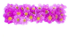 Pretty frame from purple flowers Royalty Free Stock Photo
