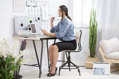 Pretty freelancer using laptop. And phone during work at home workspace with cactus stock photography