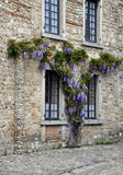 Pretty French House Royalty Free Stock Photo