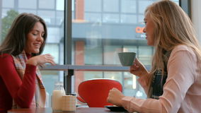 Pretty friends enjoying coffee in cafe. In high quality format stock video footage