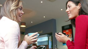 Pretty friends enjoying coffee in cafe. In high quality format stock video