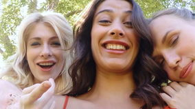 Pretty friends in the park. In slow motion stock footage