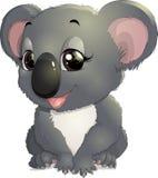 Pretty funny koala Royalty Free Stock Photo