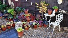 Pretty garden Stock Images
