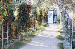 Pretty garden walkway Royalty Free Stock Photography