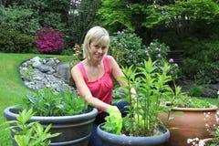Pretty gardener Stock Photos