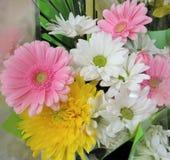 Pretty Gerbera & Daisy Flowers Biouquet stock image