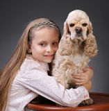 Pretty girl with  american spaniel Stock Photo