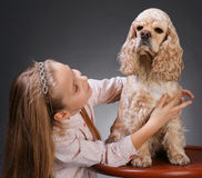 Pretty girl with  american spaniel Royalty Free Stock Photo