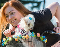 Pretty girl with bicycle and Maltese dog Royalty Free Stock Photography