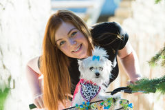 Pretty girl with bicycle and Maltese dog Stock Images