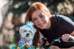 Pretty girl with bicycle and Maltese dog. Young pretty girl with bicycle and Maltese dog Stock Photography
