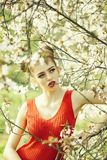 Pretty girl in blossom royalty free stock photos