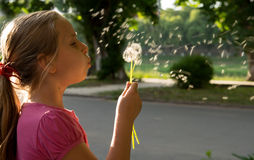 Pretty girl blowing dandelion Stock Images