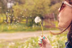 Pretty girl blowing dandelion in summer park. Green grass beautiful nature. stock photography