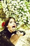 Pretty girl with fashionable spanish makeup, rose flower in hair. Girl. pretty girl with fashionable makeup and red lips, has rose flower in hair hispanic or royalty free stock photography