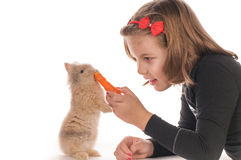 Pretty girl feeding rabbit Royalty Free Stock Image