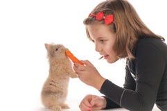 Pretty girl feeding rabbit Royalty Free Stock Image