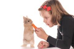 Pretty girl feeding rabbit Stock Photo